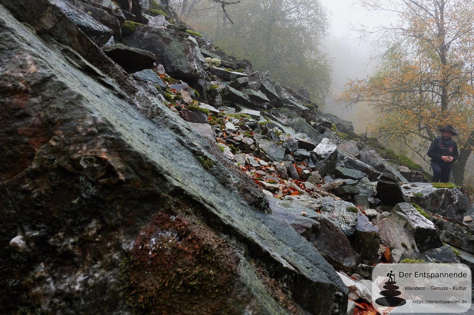 Blocksteinhalde auf dem Saar-Hunsrück-Steig, Etappe 12