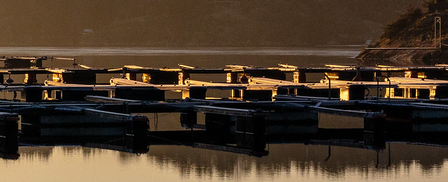 Harbor at sunset II
