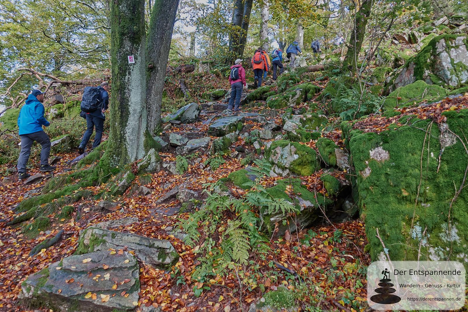 Auf dem Saar-Hunsrück-Steig zum keltischen Ringwall