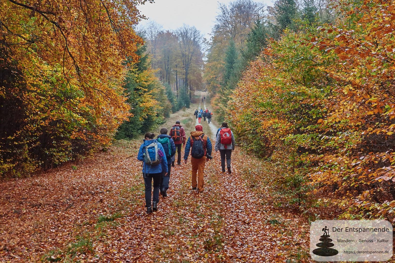 Wandern auf dem Saar-Hunsrück-Steig, Etappe 10