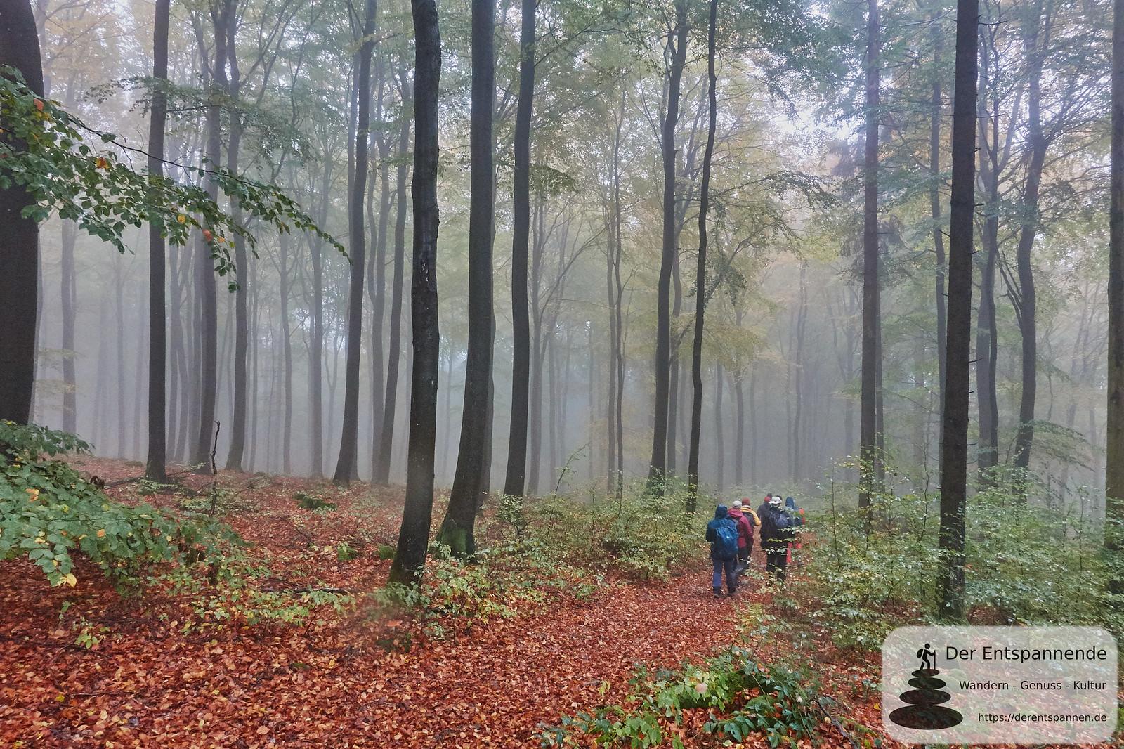 Saar-Hunsrück-Steig, Etappe 12