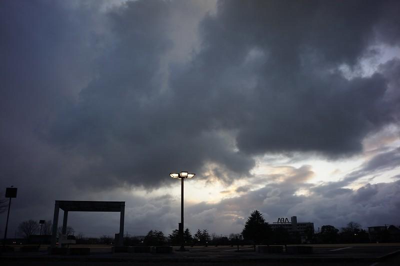 Biogonの空