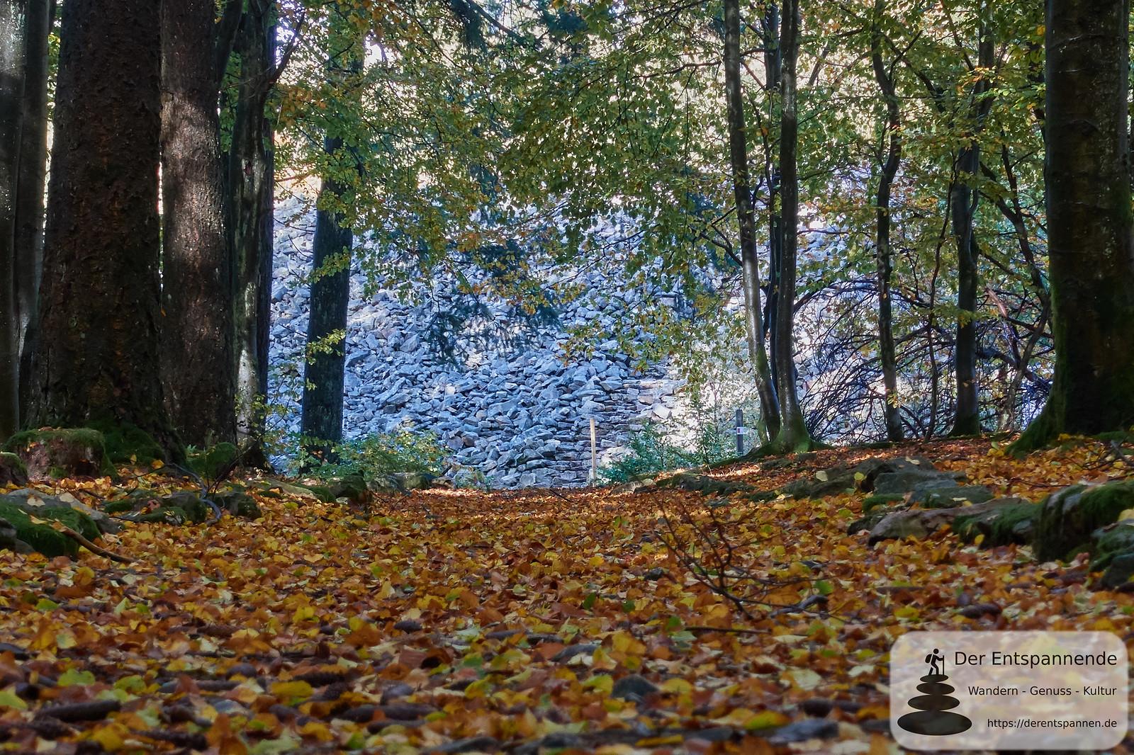 Keltischer Ringwall bei Nonnweiler