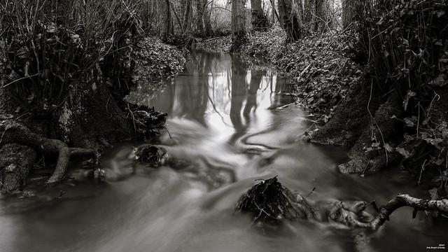 Le ruisseau tortueux