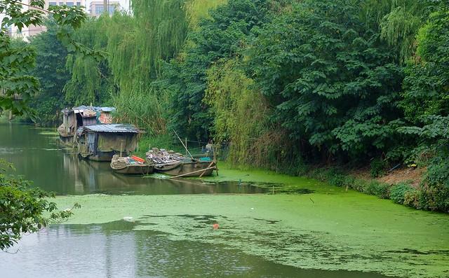 Shanghai - River Dwellers