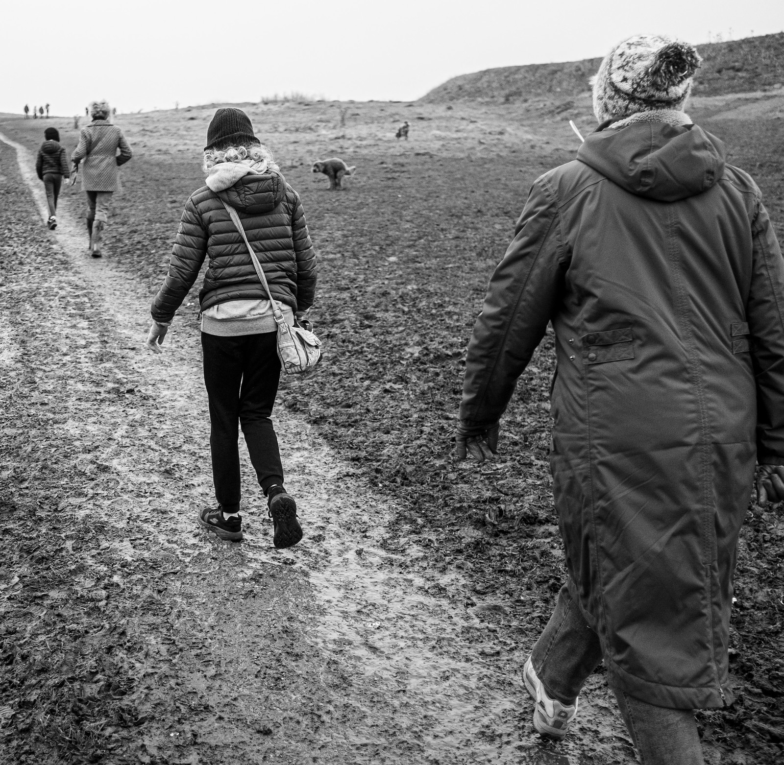 The walk of the mud jumpers