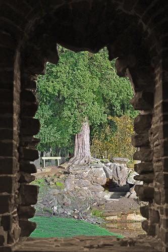 wrestpark silsoe bedfordshire heritagepark mansion earldegrey thomas 18341839 uk englishheritage bathhouse jemima windowview tree nikond7500 sigma1770mm