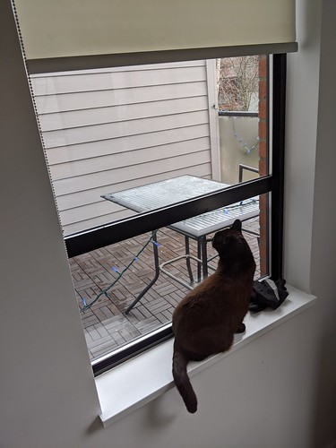 Longing for the outside world