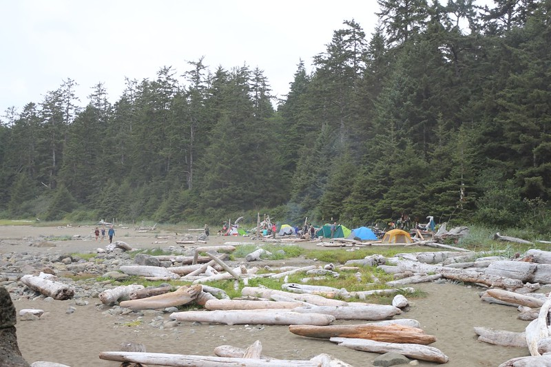 View of the Cribs Creek Campsite on the West Coast Trail from our spot across the creek