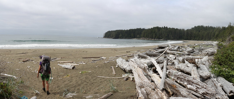 We came out of the forest onto the beach, just south of the Cheewhat River on the West Coast Trail