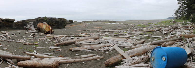 We took a Beach Access side trail and found ourselves on Stanley Beach, where there was an old boat wreck