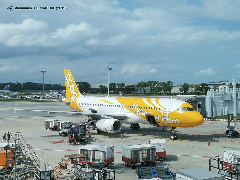 2019 Singapore Scoot Airline