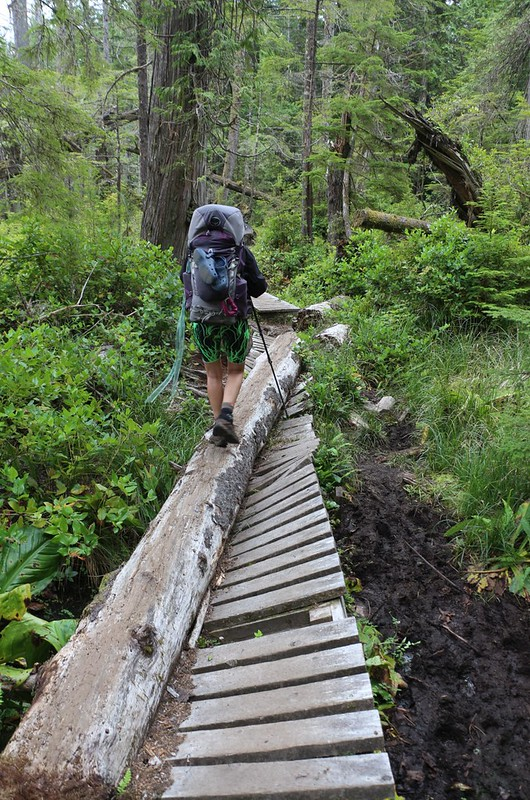 On the West Coast Trail, if a tree falls and damages the walkway, they convert the tree into a walkway!