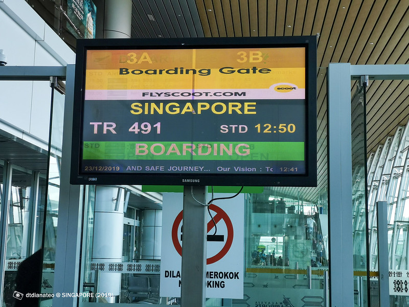 2019 Singapore Scoot Airline Boarding Gate
