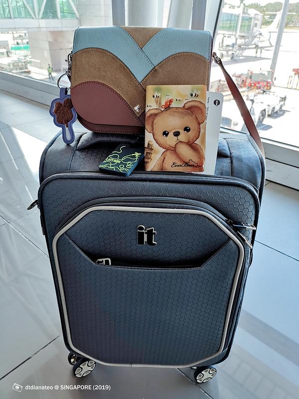 2019 Singapore Hangbag & Luggage