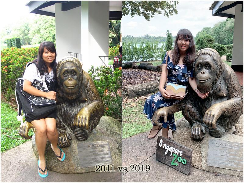 2019 Singapore Zoo 2011 vs 2019