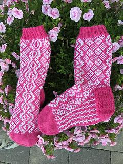 vilduværemed sokk