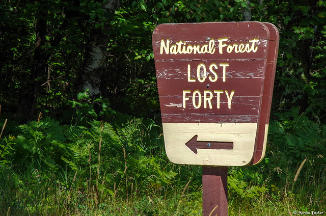 Lost Forty - Thisaway
