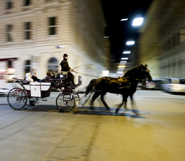 Vienna Ride