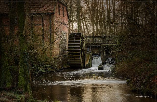 Holm - Holmer Wassermühle (2)