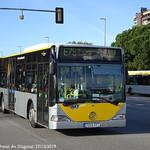 OLIVERAS 2276