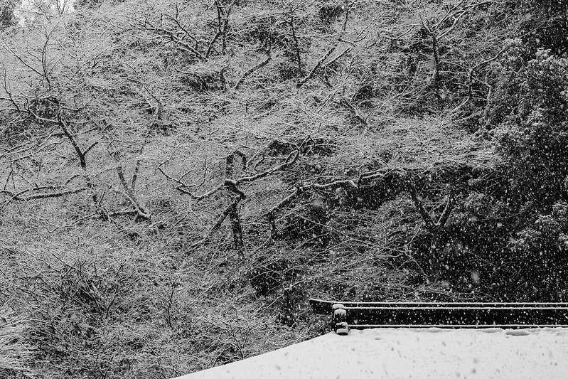 Murou-ji Snow Scene
