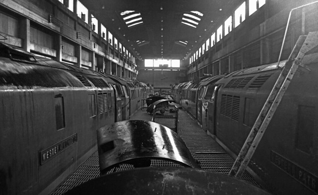 Wall to wall Westerns Plymouth Laira  26/03/1974,reliving some of these pictures makes me remember just how easy it was to get round Laira Depot  i would go into the foremans office and ask  he would say OK let me know when you leave and that was it .