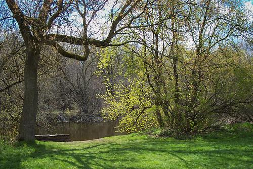 eramosariver guelph kodakdx3500 contrejour landscape shadows spring trees flickrpub published