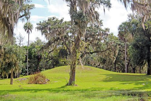 park trees landscape historical mound burialmound florida crystalriver