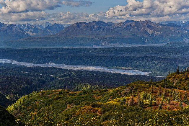 It's Not Hard to Figure out Why I Keep Coming Back to Alaska! (Denali State & National Parks)