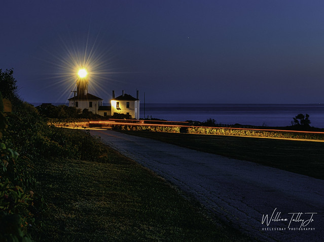 Beavertail Tail Lights