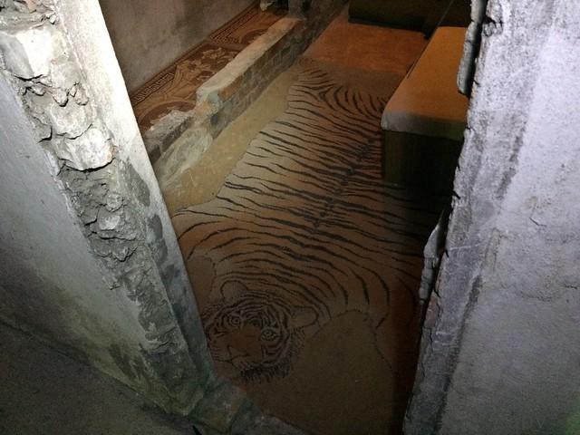 Do svidanya tiger carpet