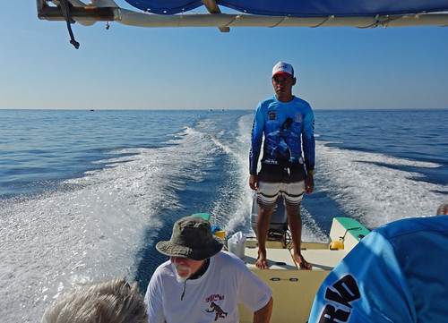 Going back on our whale watching boat in Puerto Escondido, Mexico