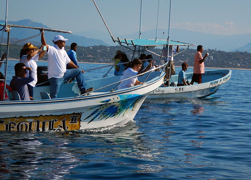 Everyone going out on whale watching boats in Puerto Escondido, Mexico