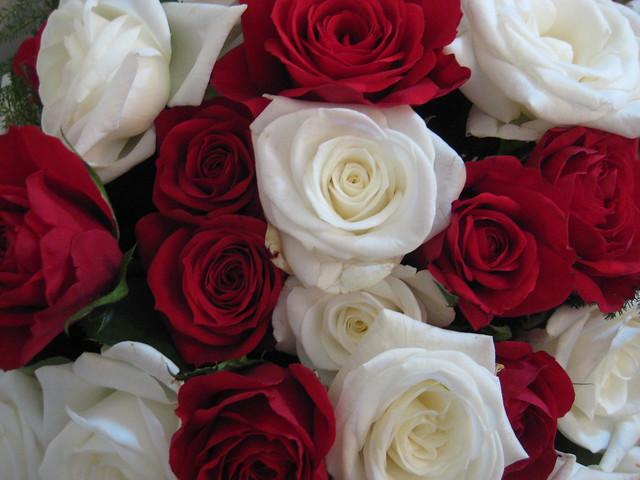 Christmas Centrepiece of Red and White Roses