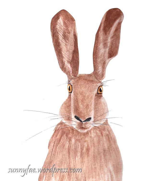 hare ahead