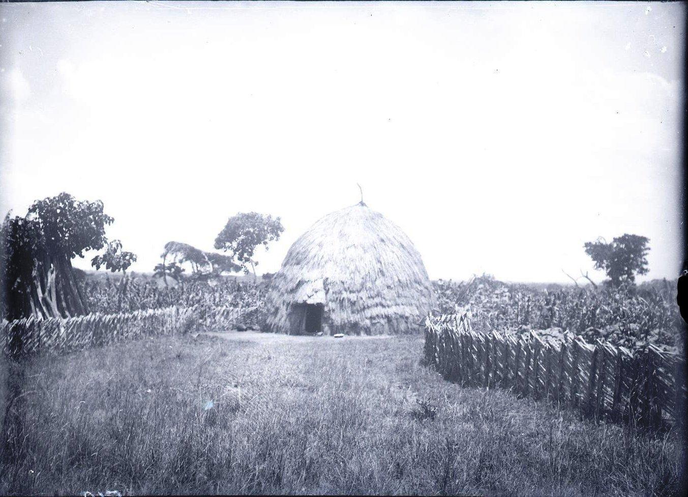 519. Близ Дельво. Традиционное жилище