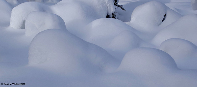 Winter Mounds