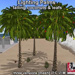 Lighting Palms