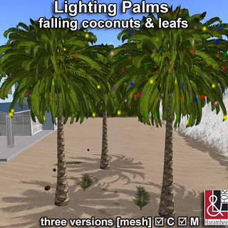Lighting Palms
