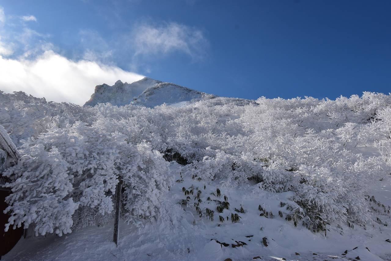 磐梯山の霧氷風景