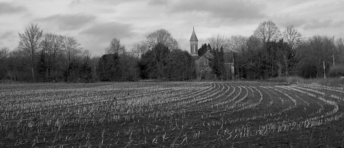 The Church seen across a field