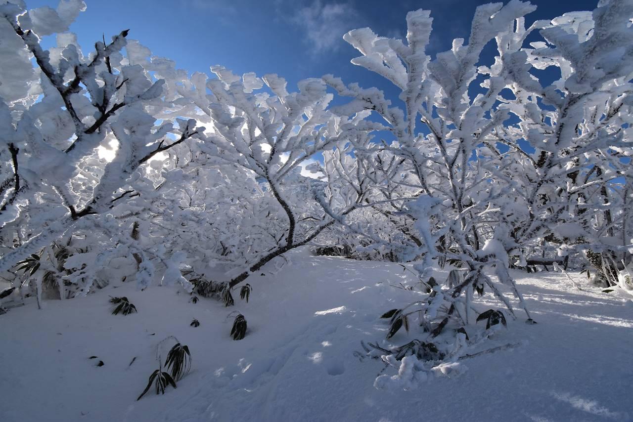 磐梯山 雪に埋まった登山道