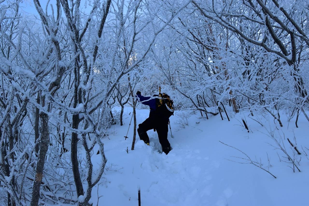 冬の磐梯山の樹氷