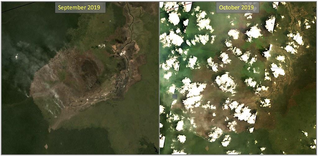 衛星影像顯示十月下旬時,大火已深入原始林。資料來源:Planet Labs。