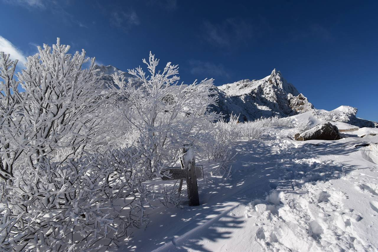冬の磐梯山 沼ノ平分岐