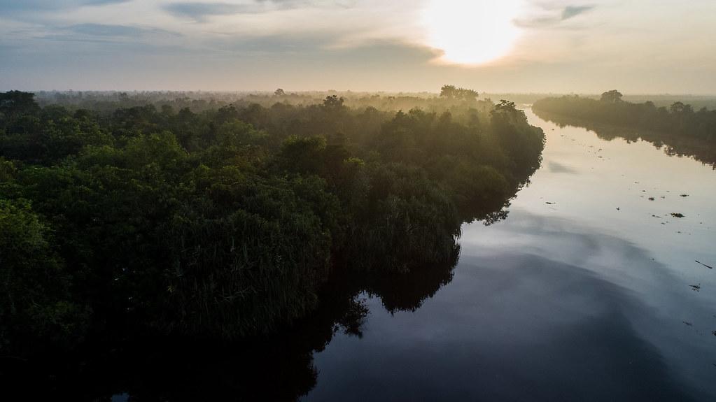 清晨,南蘇門答臘賽博科河(Sebokor River)被薄霧和樹林籠罩的景色。(照片來源:Faizal Abdul Aziz/CIFOR)