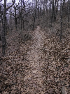 Turkey Mountain Trail 1-1-Edit | by alnbbates
