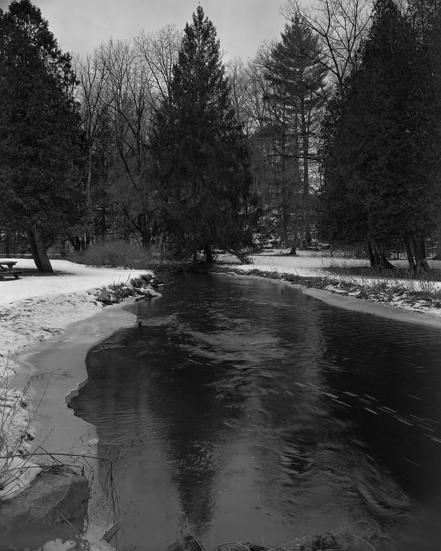 Geyser Creek, Hemlocks