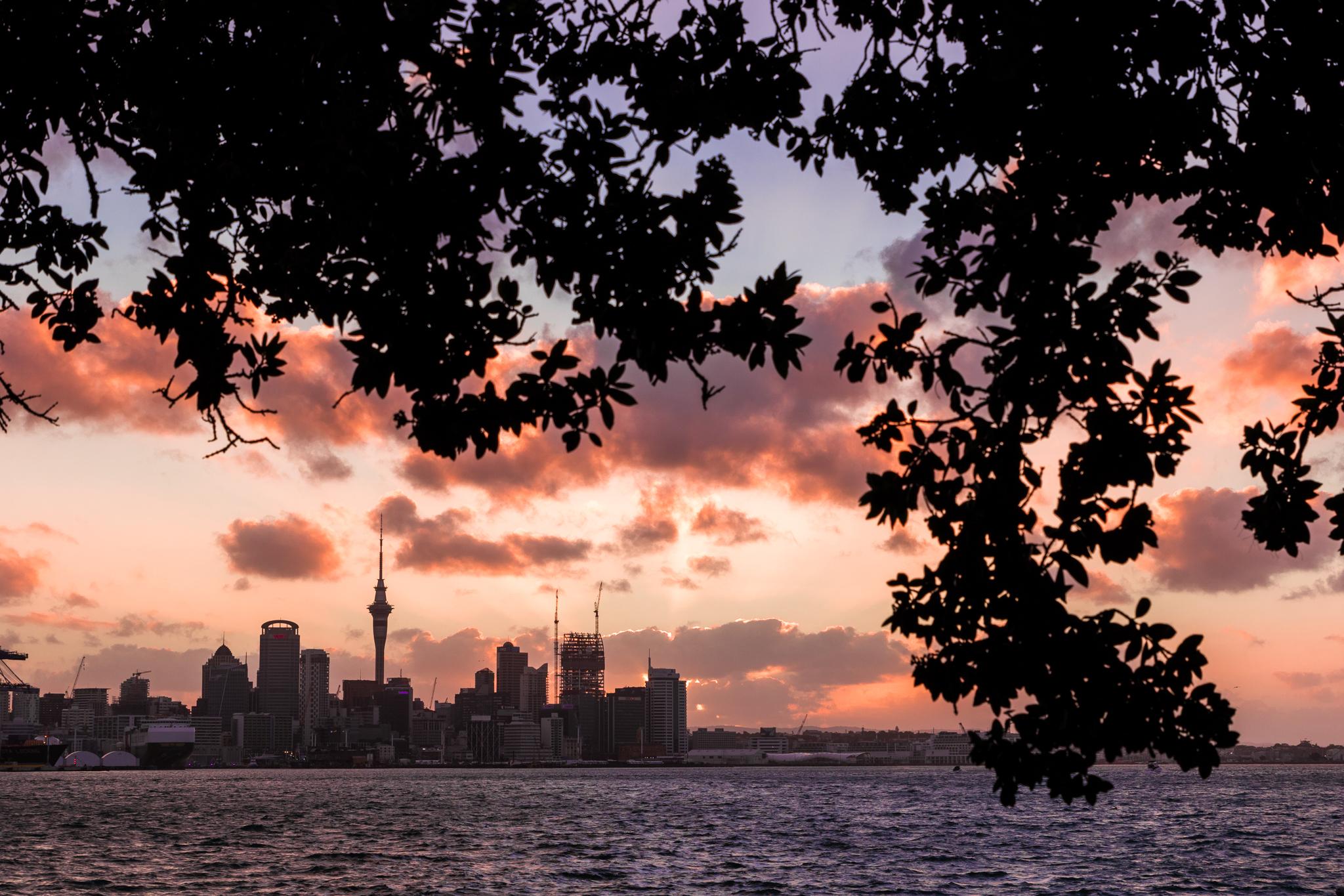 Auckland 3-25